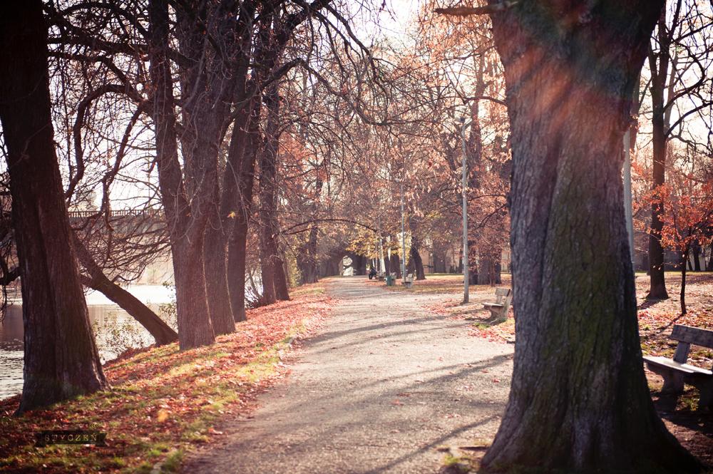 2011.11_Praga_0033