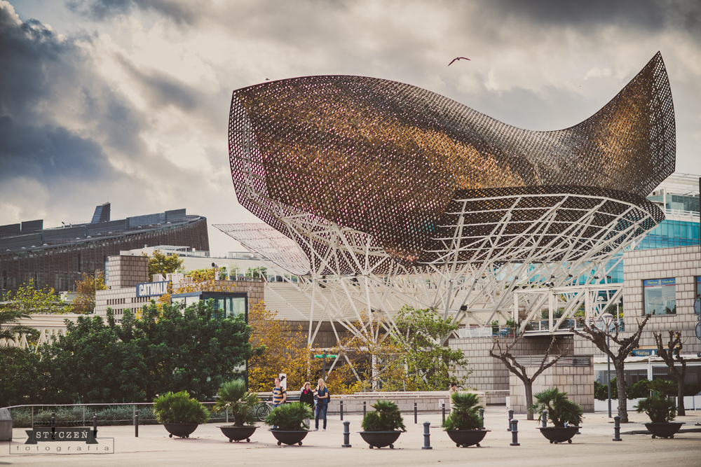2013.10_Barcelona_0046