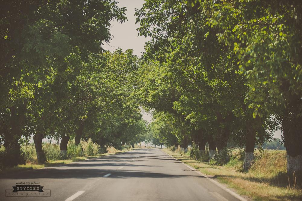 2014.08_Rumunia_0064