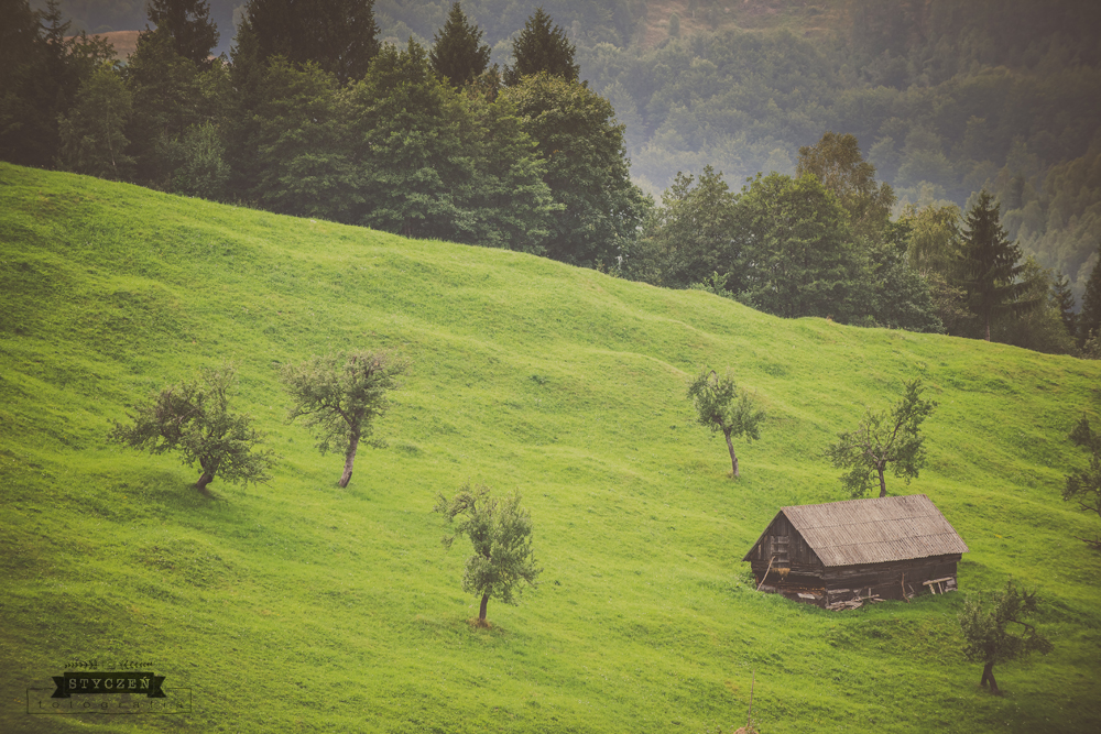 2014.08_Rumunia_0129